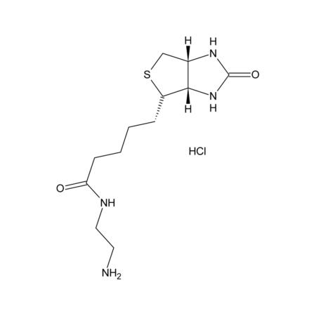 N-(2-Aminoethyl)biotinamide hydrochloride