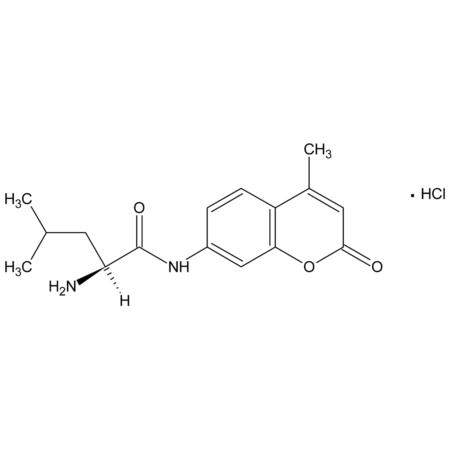 L-Leucine-7-amido-4-methylcoumarin hydrochloride