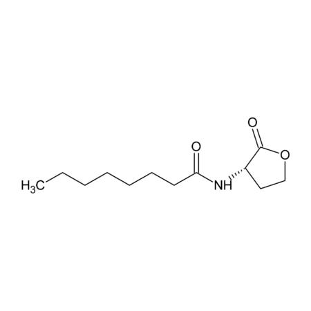 N-Octanoyl-L-homoserine lactone