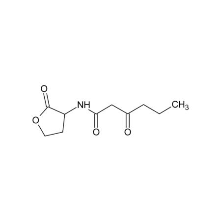 N-(3-Oxohexanoyl)-DL-homoserine lactone